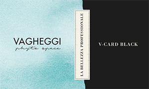 Immagine della V-CARD Black